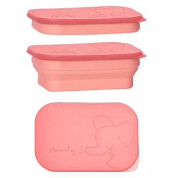 Lunch box, coral