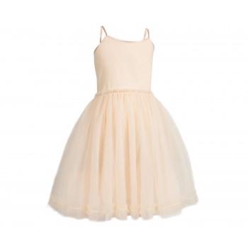 Princess tulle dress powder Size 4 / 6