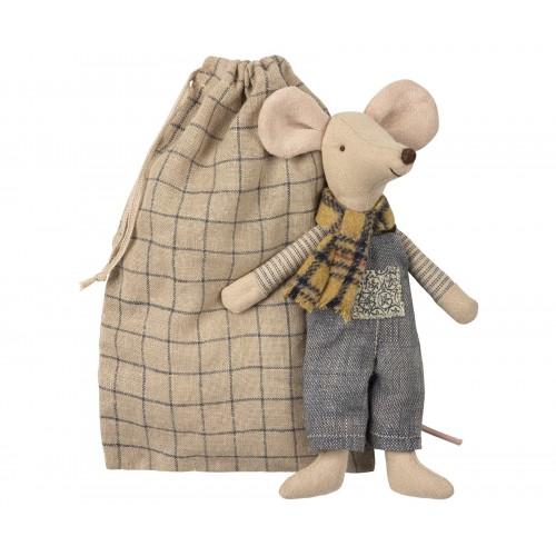 Ratón de invierno, padre en bolsa