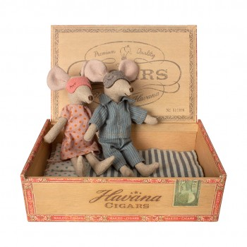 Mum & Dad mice in a cigar box