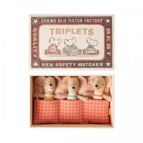 Ratoncitos trillizos bebé en su caja (baby)