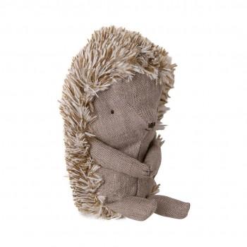 Hedgehog in leaf