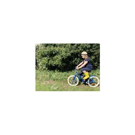 Bike Flash
