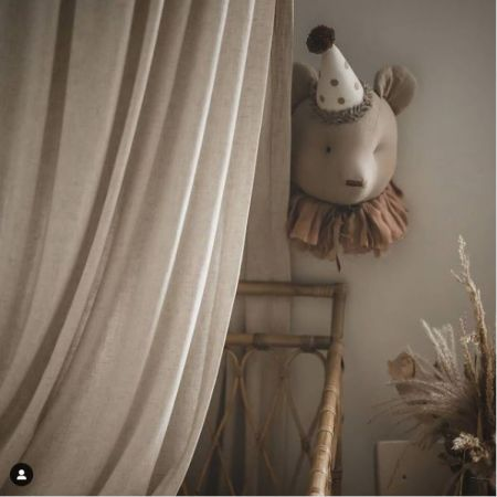 Bear Pigeon - Golden Cap